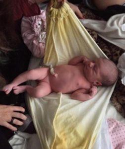 nascita lotus